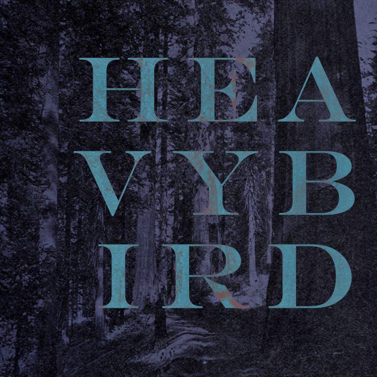 heavybird1